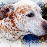 Colorful Spots Art Print