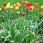 Colorful Spring Art Print