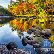 Colorful Trees Along The Swift River Art Print