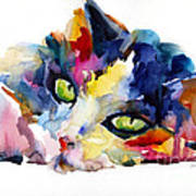 Colorful Tubby Cat Painting Art Print