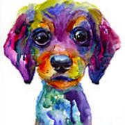 Colorful Whimsical Daschund Dog Puppy Art Art Print