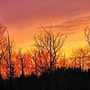 Colorful Winter Sunset Art Print