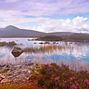 Colorful World Of Rannoch Moor. Scotland Art Print