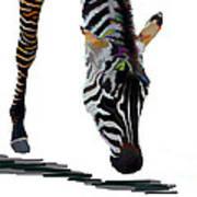 Colorful Zebra 2 Art Print