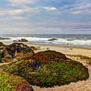 Colors And Texures Of The California Coast Art Print