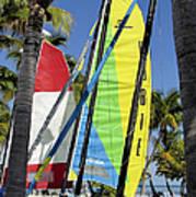 Key West Sail Colors Art Print
