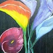 Colors Of Calla Lillies Art Print
