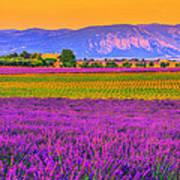 Colors Of Provence Art Print