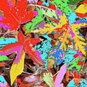 Coloured Leaves By M.l.d. Moerings  2009 Art Print