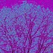 Colourful Silhouette Art Print