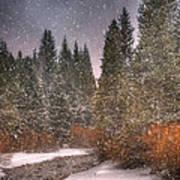 Colours Of Winter Art Print by Juli Scalzi