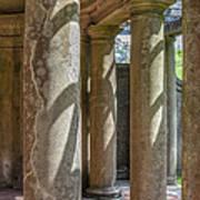Columns At Cranes Art Print