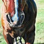 Comanche's Hello Art Print