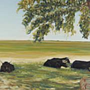 Commanche National Grasslands La Junta Colorado Art Print
