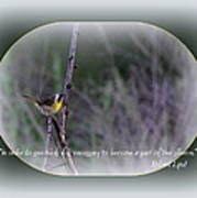 Common Yellowthroat - Bird Art Print