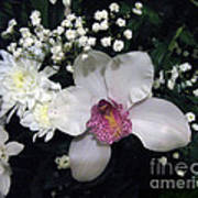 Composition With A Pink Orchid Art Print
