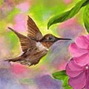 Connie's Hummingbird Art Print