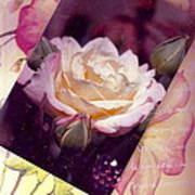 Continuation From Print To Photo Of White Rose Art Print