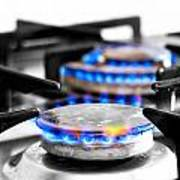 Cooker Gas Hob With Flames Burning Print by Fizzy Image