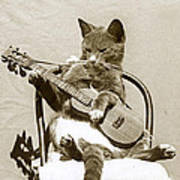 Cool Cat Playing A Guitar Circa 1900 Historical Photo By Photo  Henry King Nourse Art Print