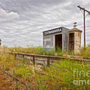 Coonawarra Station South Australia Art Print