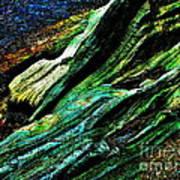 Coos Canyon Y241 Art Print