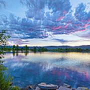 Coot Lake View Art Print