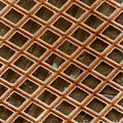 Copper Electron Micrograph Grid Art Print