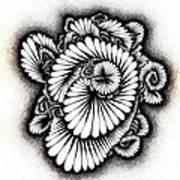Coral Burst Art Print