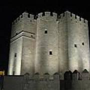 Cordoba Castle By Night Art Print