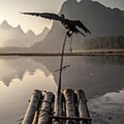 Cormorant Fishing On Li River Art Print