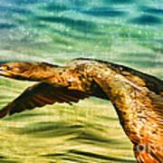 Cormorant On The Move Art Print