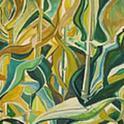 Corn Curves Art Print