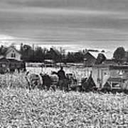Corn Picker November 2013 Art Print