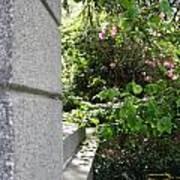 Corner Garden Art Print