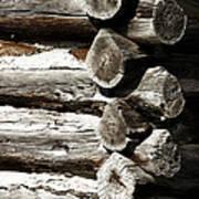 Corner Logs Art Print