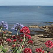 Cornwall Newlyn Coast One Art Print