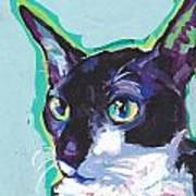 Corny Kitty Art Print