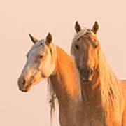 Corona And Cheyenne At Dawn Art Print