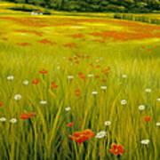 Cortona Poppies Art Print