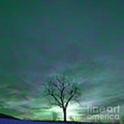Cosmic Sky Winter Tree Art Print