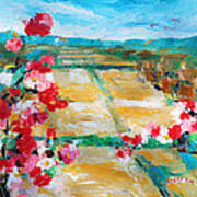 Cosmos In The Field 2 Art Print by Becky Kim
