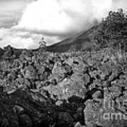 Costa Rican Volcanic Rock  Art Print