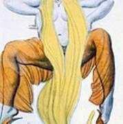 Costume Design For A Bacchic Dancer Art Print