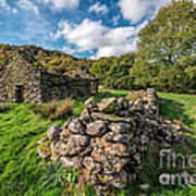 Cottage Ruin Art Print by Adrian Evans