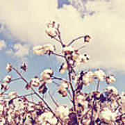 Cotton In The Sky With Filter Art Print