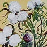 Cotton Squared Art Print