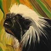 Cotton Top Tamarin Zack Half Of All Proceeds Go To Jungle Friends Primate Sanctuary Art Print