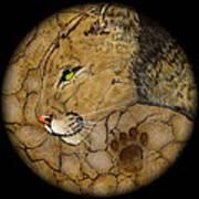 Cougar Print by Ethan  Foxx