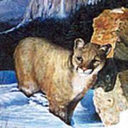 Cougar In Snow Art Print